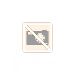 Koffer (Piezosurgery® touch/white)