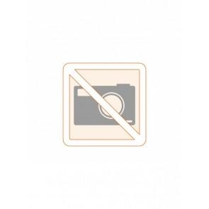 APRF Plomben & Etiketten (100 Stück)